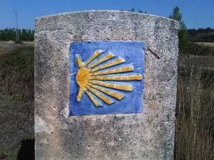 Camino de Santiago shell