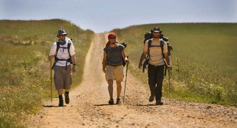 pilgrims walking the camino