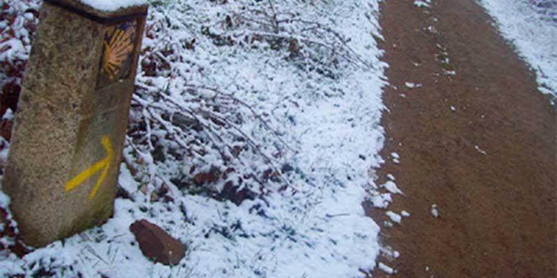 winter-camino