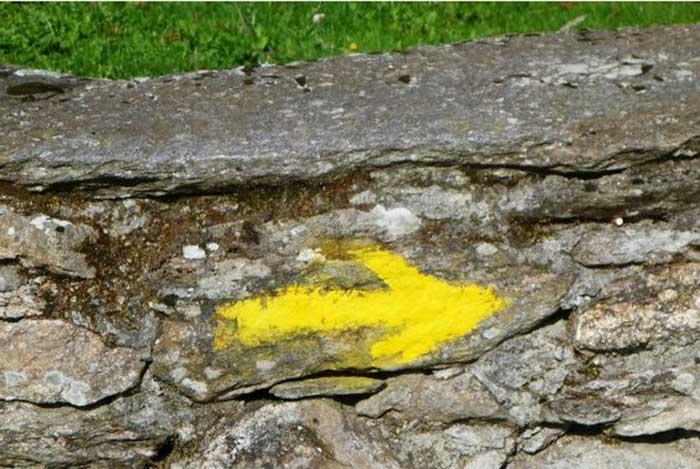 yellow-arrow-2