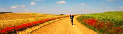 your-first-camino-de-santiago-advises