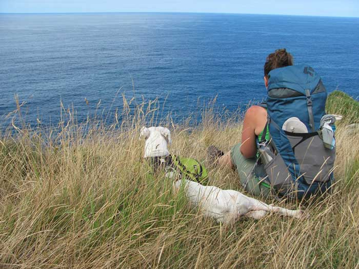 your-first-camino-de-santiago-finisterre-pets