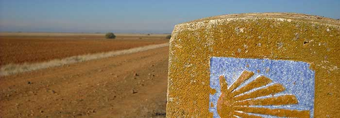 meseta-trail-camino