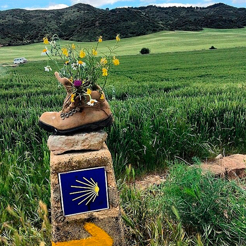 Pictures that explain the Camino de Santiago´s magic-4