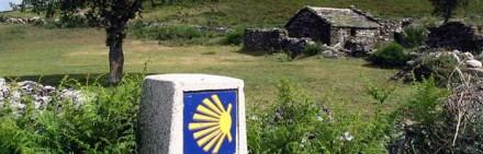 camino-primitivo-banner