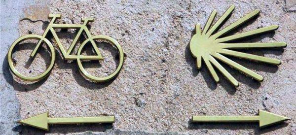 camino-cycle