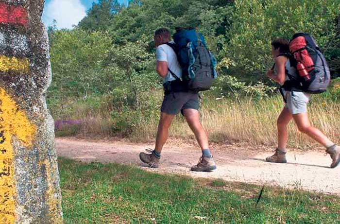 camino-de-santiago-race