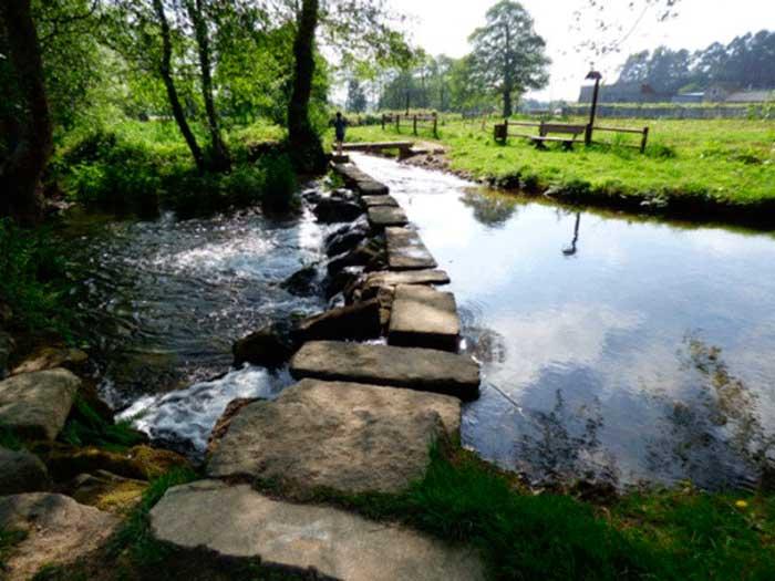 ruta-de-auga-camino-spa