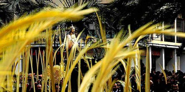Palm-Sunday-camino-de-santiago-4