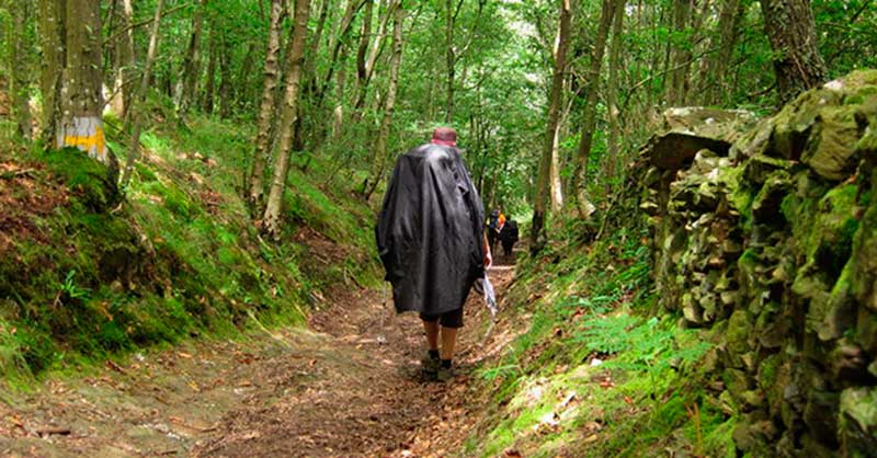 shall-we-walk-the-camino-in-autumn-2