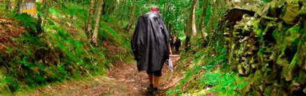 shall-we-walk-the-camino-in-autumn-4