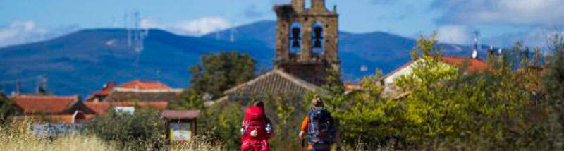 It-is-January-why-don´t-you-plan-your-next-Camino-cover
