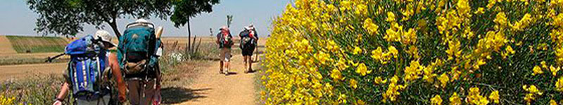 PACKING-LIST-FOR-YOUR-SPRING-CAMINO-cover
